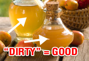 The Alternative Daily Special Report Apple Cider Vinegar