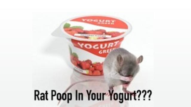 how to clean rat poop