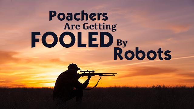 Poachersaregettingfooledbyrobots_640x359