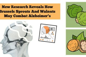 A new study shows that Brussels sprouts and walnuts may help those with Alzheimer's Feature photo