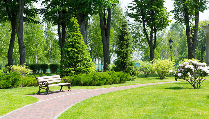Parks and sidewalks are vital for health