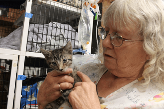 Woman Saves Cats From Smoke-Filled Building