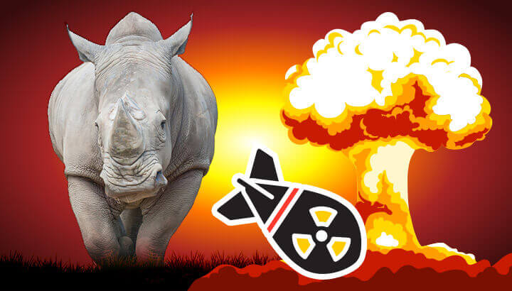 Rhino horn trade and nuclear arms