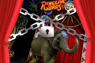 Ringling Bros. circus closing down for good