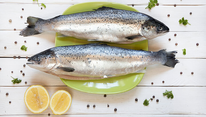 Salmon may contain 81 contaminents