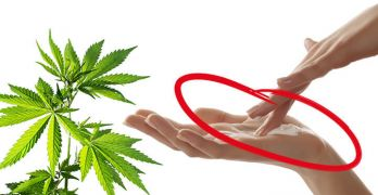 Would you try cannabis lubricant