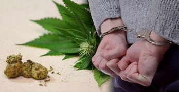 Congress and marijuana reform