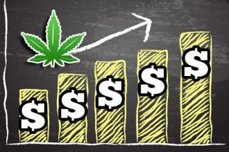 There is a lot of buzz about the budding marijuana industry
