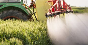 New labels will let you know if your product has been sprayed with gyphosate