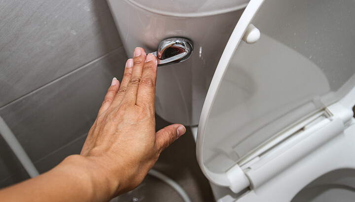 To know how your colon is doing, always look at your poop before you flush.